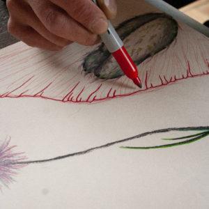 """20 mai 2019 : Atelier """"Feuilles, fleurs et branches"""""""