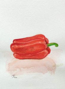 Read more about the article Poivron rouge à l'aquarelle